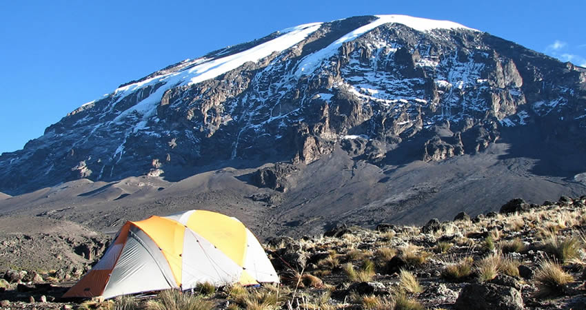 8 Days Kilimanjaro Trekking Tour